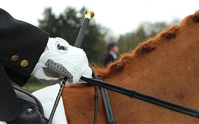 Dé tip om de juiste teugelvoering te hebben tijdens het paardrijden!
